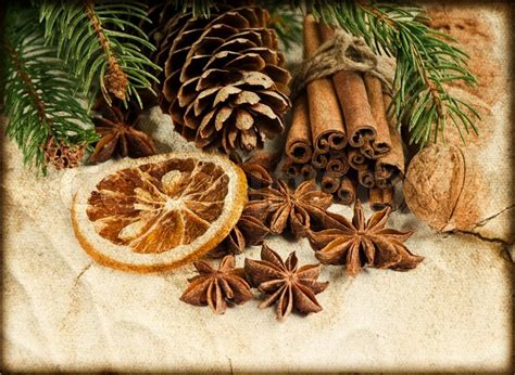 Cinnamon Sticks For Decoration by Decoration With Cinnamon Sticks And Anise