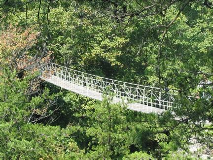 swinging bridge tennessee bridgemeister lookout mountain swinging bridge