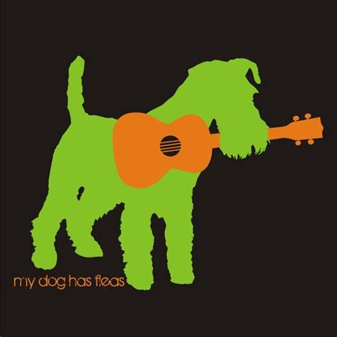 if dog has fleas are they in my house my dog has fleas sticker by ukulelethreads on etsy 1 00