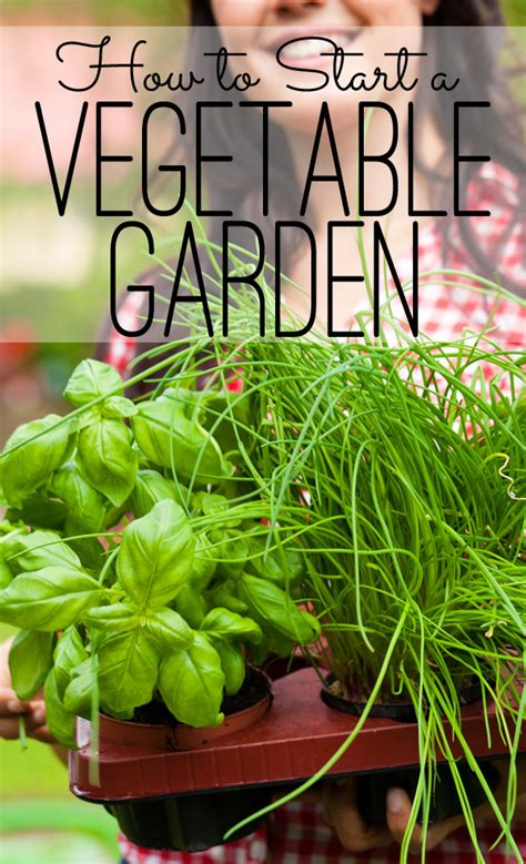 The Seasoned Homemakerhow To Start A Vegetable Garden Starting Vegetable Garden