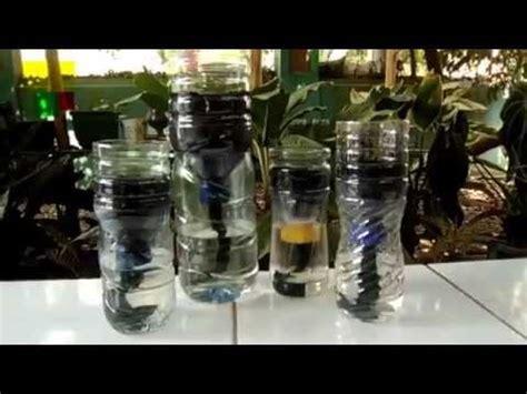 cara membuat hidroponik botol gantung cara sederhana hidroponik botol plastik bekas youtube