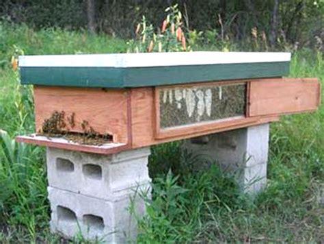 top bar hive with window – lance waldner | beesource