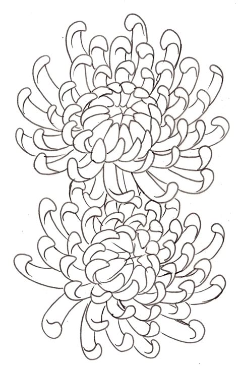 chrysanthemum flower tattoo designs chrysanthemum flower 14 by metacharis on