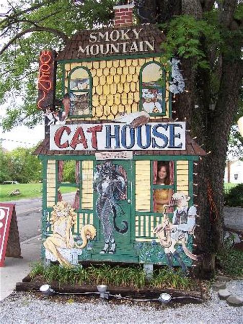 front yard signs front lawn sign picture of smoky mountain cat house