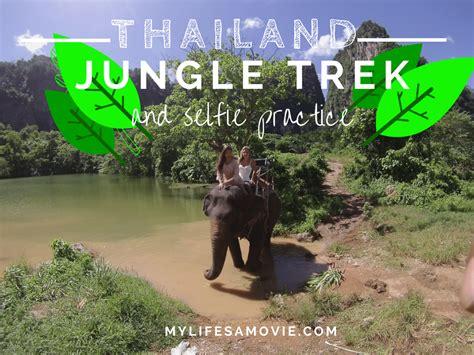 Thailand Essays by Pai Thailand Jungle Trekking Essay Rosemurgyfamilycom