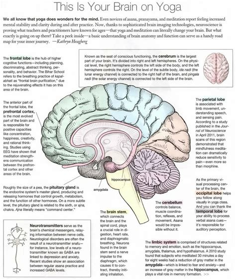 the elephant in the brain motives in everyday books this is your brain on infographic magic elephant
