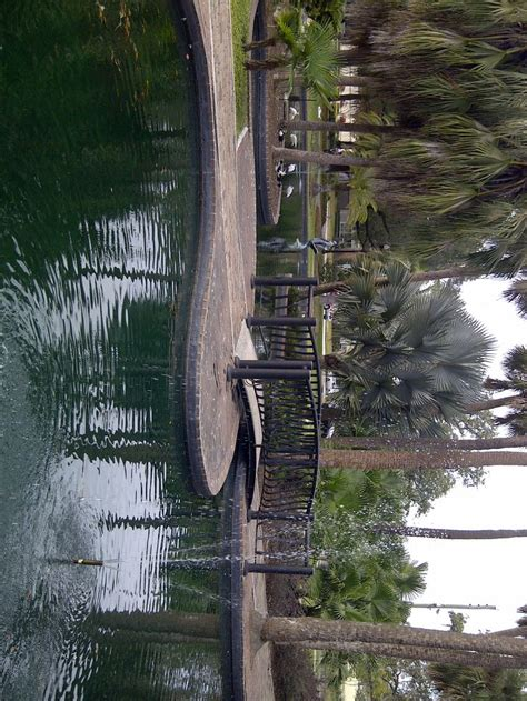 Search Orlando Florida 17 Best Images About Florida On Free Things To