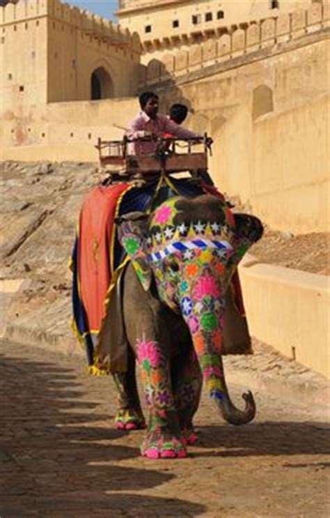 1000+ ideas about painted indian elephant on pinterest