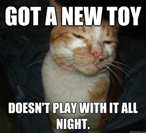 New Cat Memes - got a new toy cat meme cat planet cat planet
