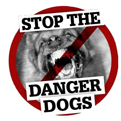 dogs in danger attack tells how staffordshire bull terrier attacked like a shark