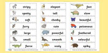 animal adjectives cards primary resources english literacy