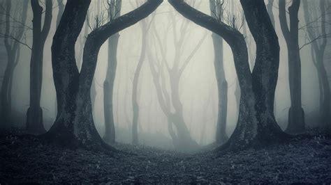 scary background scary horror creepy