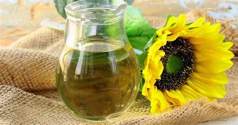 Minyak Bunga Matahari 6 khasiat minyak biji bunga matahari gambar gambar bunga