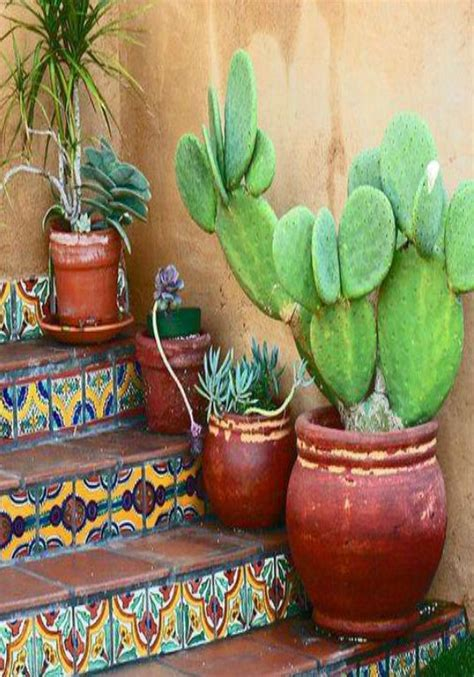 best 25 mexican garden ideas on mexican style