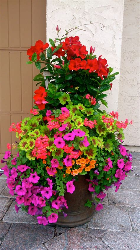 flower planter ideas front porch flower planter ideas 38 freshouz
