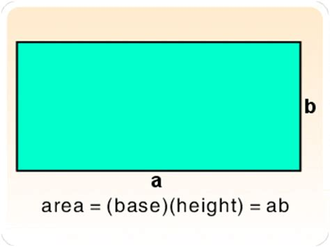 area of a square area of a square or a rectangle