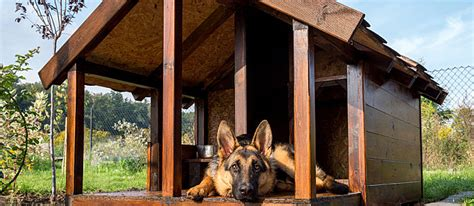 how do you make a dog house in minecraft 20 of the best free diy dog house plans on the internet care com community