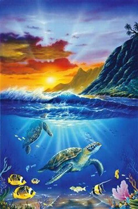 23 best images about ocean life! on pinterest | turtle