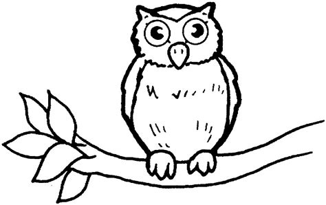 free owl coloring print outs coloring pages