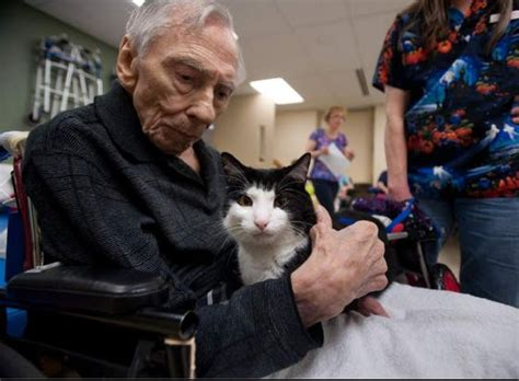 scooter special therapy cat becomes aspca cat of the year love meow