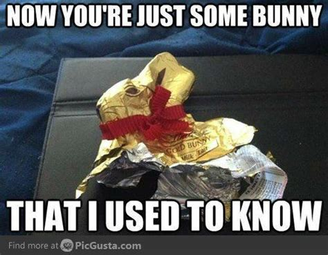 Chocolate Bunny Meme - 265 best holiday humor images on pinterest halloween