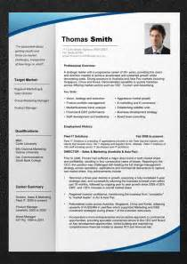 professional resume templates vnzgames