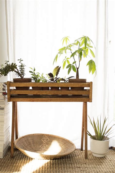 Planter Stands Indoors by 25 Best Ideas About Diy Plant Stand On Plant