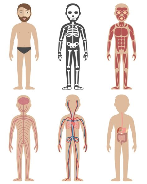 Anatomie des Geistes kostenloser Download