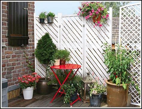 Winterharte Pflanzen Für Balkon by Sichtschutz Balkon Pflanzen Winterhart Heimdesign