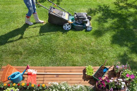 summer lawn care tips the best summer lawn care tips digital trends