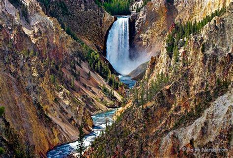 yellowstone lower falls waterfall in yellowstone ralph nordstrom photography lower yellowstone falls
