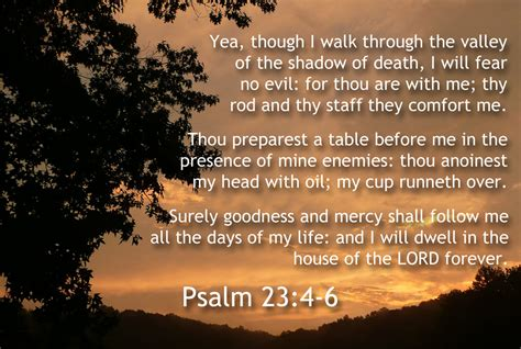 psalm for comfort in death psalm 23 4 6 november 2013 main street memory verse