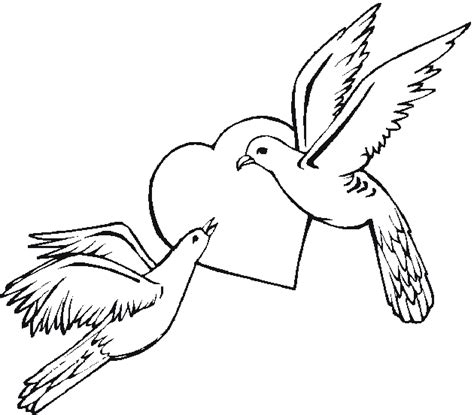 coloring pages of animals and birds free bird coloring pages
