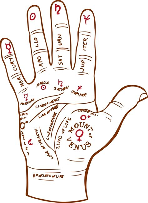 palm reading diagram psychic sight palmistry psychic sight