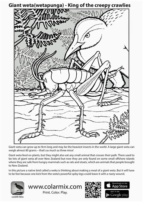 Quiver Coloring Page by 55 Quiver Coloring Pages To Print Coloring Pages