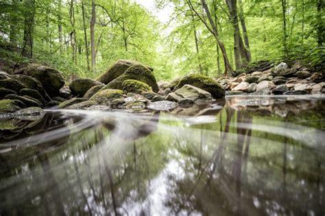 Soapstone Valley Park rock creek park