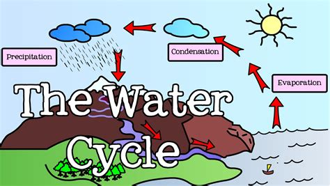 All About Bicycle 2 all about the water cycle for introduction to the