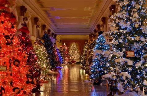 baton rouge tree christmas lights service 17 best images about governors mansion and capitol on trees east baton