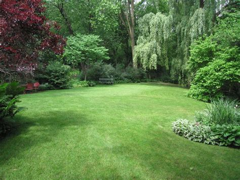 large backyard our yard has an amazing open grass space surrounded by the