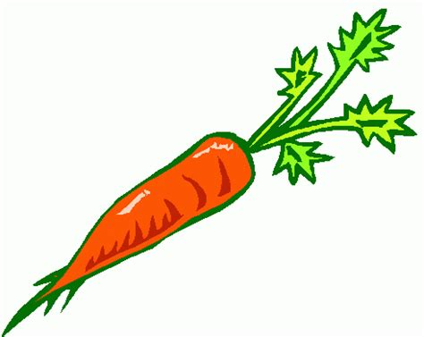 coding for carrots carrots clipart clip library