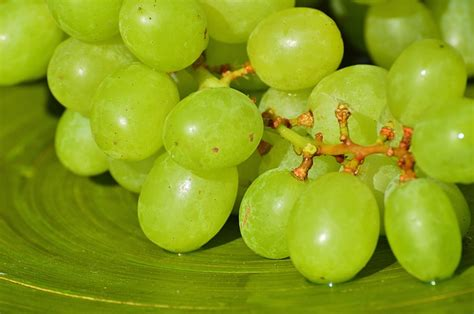 the 12 grapes for new year s eve in tenerife