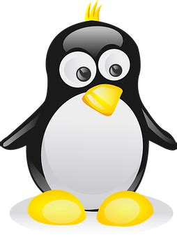 penguin images · pixabay · download free pictures