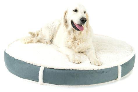 bed for arthritis beds for dogs with arthritis korrectkritterscom
