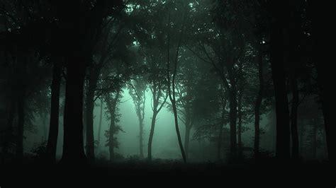 wallpaper dark background dark forest wallpaper mobile natures wallpapers