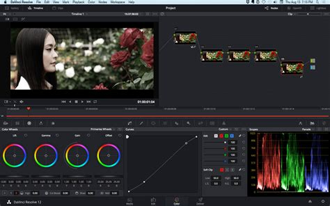 color grading software professional color grading by guidodesign on envato