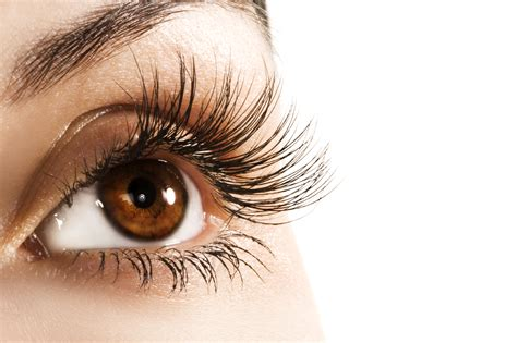 7 Best Products For Longer Lashes by How To Make Your Eyelashes Appear Longer Trusper