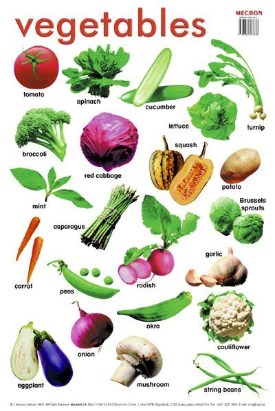 different type of leafy vegetable with name 43 best vegetables and fruit list names images on fruit list vegetables and