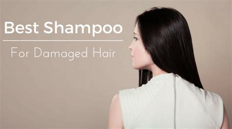 Hair Dryer That Doesn T Damage Hair the best shoo for damaged hair that doesn t cost a ton