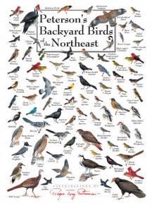 backyard birds jigsaw puzzle 2017 2018 best cars reviews