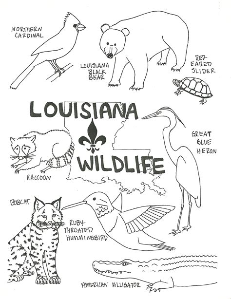 louisiana wildlife coloring page beat up road sign